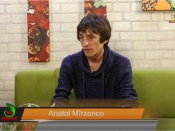 mirzenco